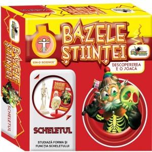 bazele-stiintei-scheletul